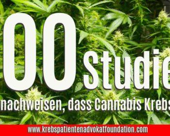KPAF® 100 Studien die nachweisen ,dass Cannabis Krebs heilt. Krebspatientenadvokatfoundation.com